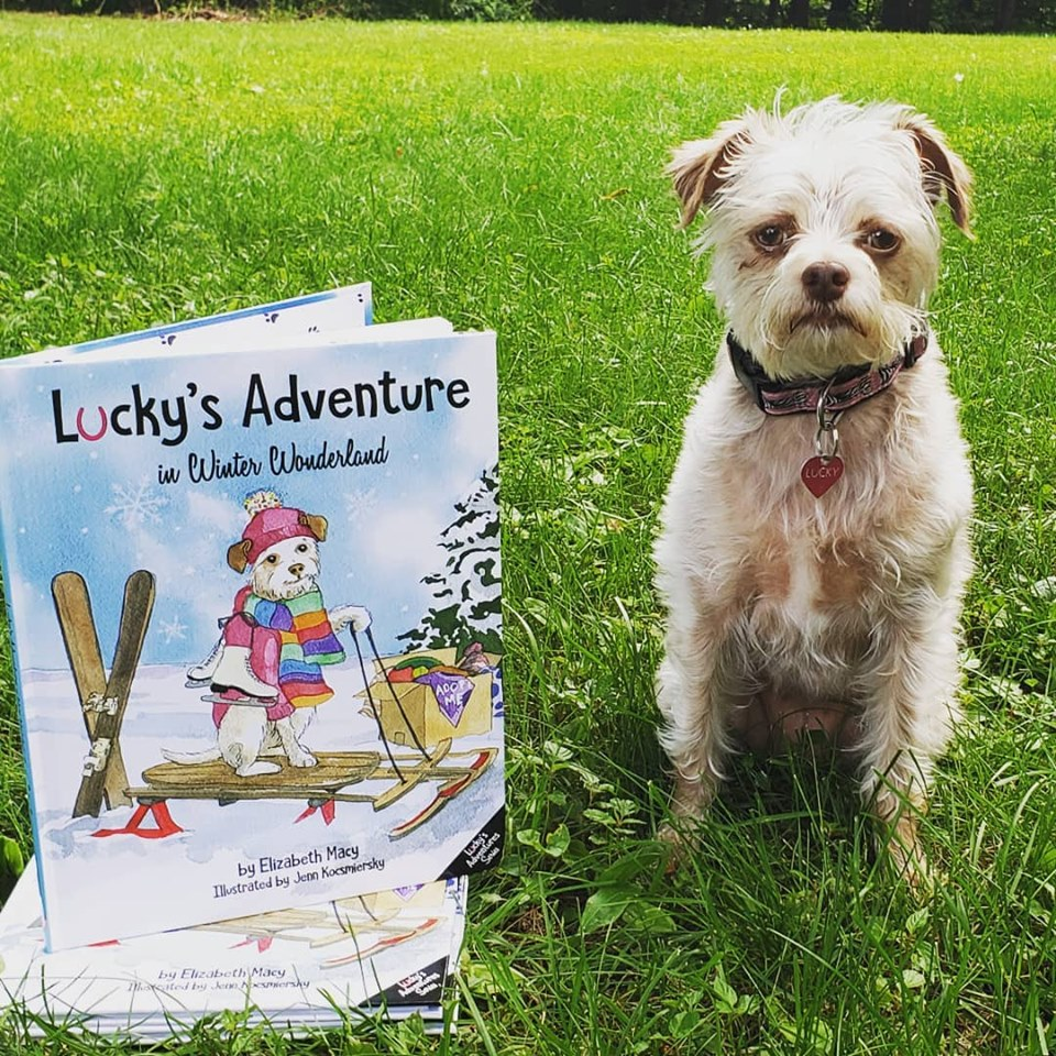Children's Book Review: Lucky's Adventure in Winter Wonderland